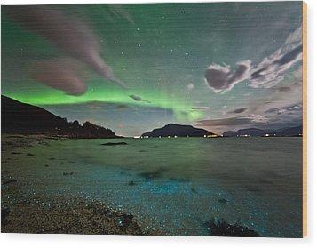 Auroras And Dinoflagellates Wood Print