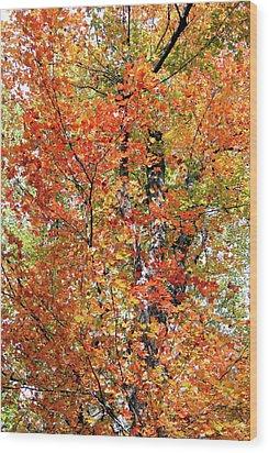 Autumn Confetti Wood Print