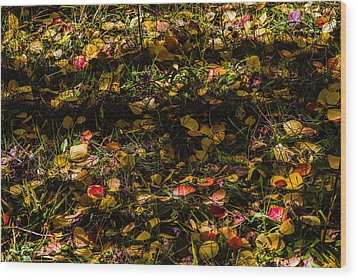 Autumn's Mosaic Wood Print by Alana Thrower