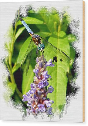 Wood Print featuring the photograph  Blue Dragonfly by Lila Fisher-Wenzel
