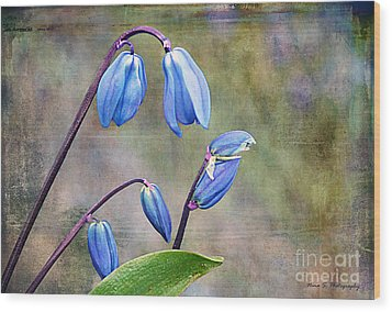 Bluebells And Beyond Wood Print by Nina Silver