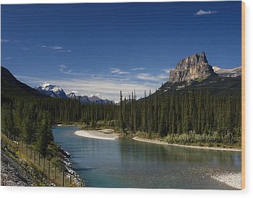 Castle Mountain 1 Wood Print
