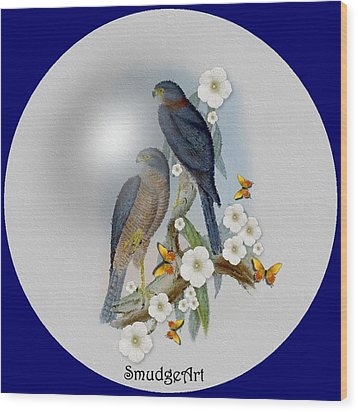 Collared Sparrow Hawk Wood Print by Madeline  Allen - SmudgeArt
