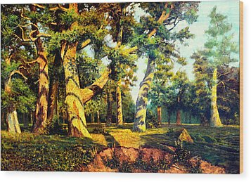 Green Summer-the Oak Forest Wood Print