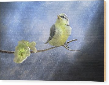 Little Sunshowers Wood Print by Trudi Simmonds