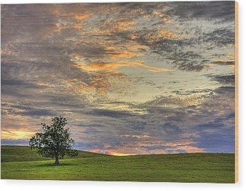 Lonley Tree Wood Print by Matt Champlin