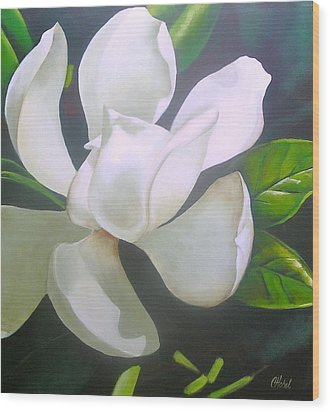 Magnolia Delight Painting Wood Print