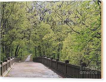 Wood Print featuring the photograph  Matthiessen State Park In Spring by Paula Guttilla