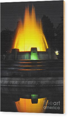 Mulholland Fountain Reflection Wood Print