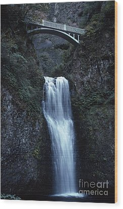 Wood Print featuring the photograph  Multnomah Falls by Edward R Wisell