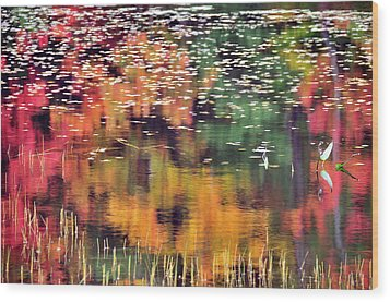 New England Reflections Wood Print by Betty LaRue