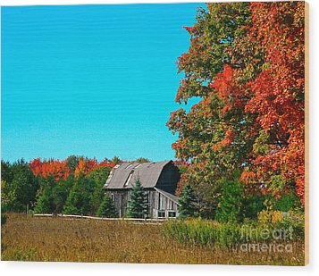 Old Barn In Fall Color Wood Print