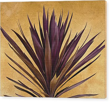 Purple Giant Dracaena Santa Fe Wood Print by John Hansen