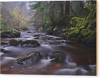 Reelig Glen Wood Print