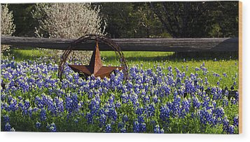 Texas Bluebonnets IIi Wood Print by Greg Reed