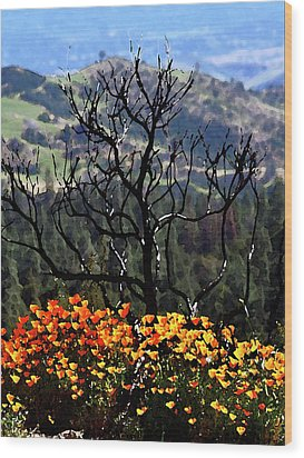 Tree And Poppies Wood Print by Gary Brandes