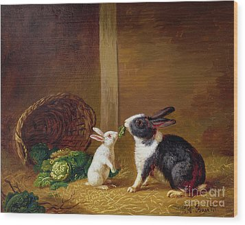 Two Rabbits Wood Print by H Baert