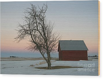 Winter In Rural America Wood Print
