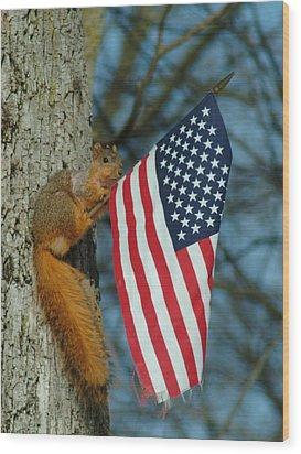 010510-4   One Patriotic Squirrel Wood Print by Mike Davis
