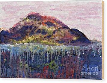 01252 Big Island Wood Print by AnneKarin Glass