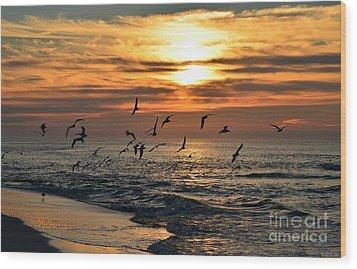 0221 Gang Of Gulls At Sunrise On Navarre Beach Wood Print