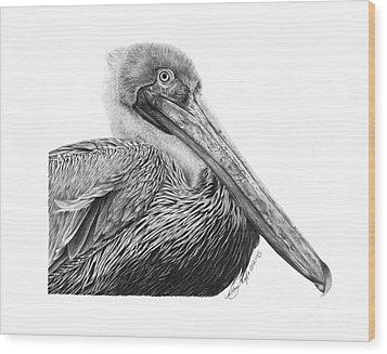 047 - Sinbad The Pelican Wood Print by Abbey Noelle