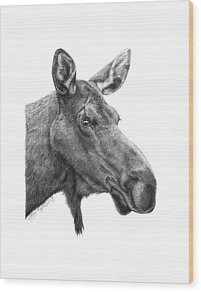 Wood Print featuring the drawing 048 - Shelly The Moose by Abbey Noelle