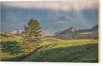 #0613 - Absaroka Range, Paradise Valley, Southwest Montana Wood Print