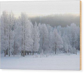 A Frosty Morning Wood Print by DeeLon Merritt