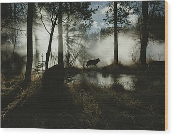 A Gray Wolf, Canis Lupus, In Silhouette Wood Print by Jim And Jamie Dutcher