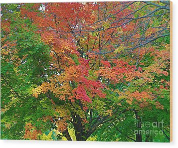 Wood Print featuring the photograph A Michigan Fall by Robert Pearson