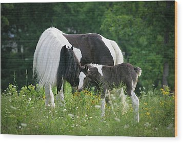 A Mother's Love Wood Print by Laurie Comfort