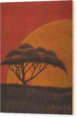Acacia At Sunset Wood Print by Diane Korf