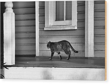 Across The Porch Wood Print by Jan Amiss Photography