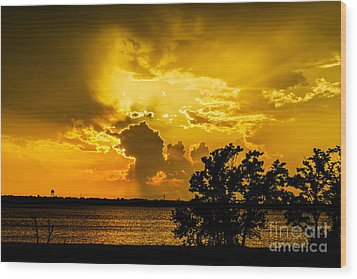 Wood Print featuring the photograph After The Storm by Betty LaRue