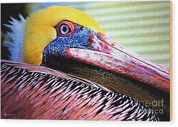 Albatross King Wood Print