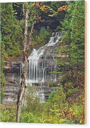 Alger Falls Wood Print by Michael Peychich