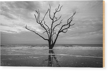 Alone Wood Print by Michael Donahue