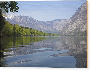 Wood Print featuring the photograph Alpine Clarity by Ian Middleton