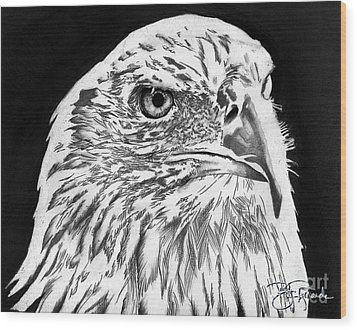 American Bald Eagle Wood Print by Bill Richards