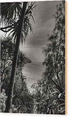 Ancient Kauai Wood Print by Natasha Bishop