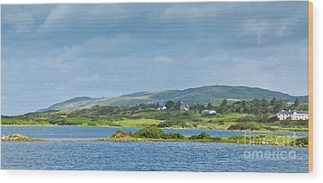 Ardmore Bay Wood Print by Gabriela Insuratelu