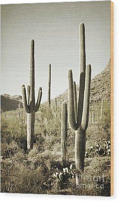 Wood Print featuring the photograph Arizona Cactus Pair Desert by Andrea Hazel Ihlefeld