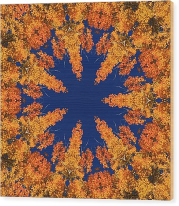 Aspen Kaleidoscope  Wood Print by Bill Barber