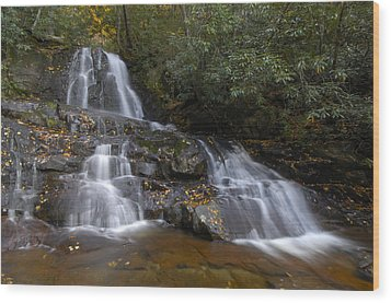 Autumn At Laurel Falls Wood Print by Darrell Young
