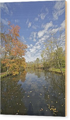 Autumn Colors On The Delaware And Raritan Canal Wood Print