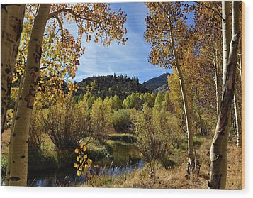Wood Print featuring the photograph Autumn In Bishop Creek by Dung Ma