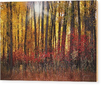 Autumn Light Wood Print by Leland D Howard