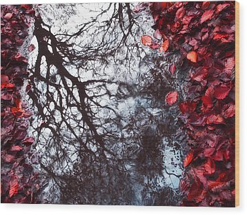 Autumn Reflections II Wood Print by Artecco Fine Art Photography