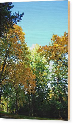 Wood Print featuring the photograph Autumn by Sergey and Svetlana Nassyrov